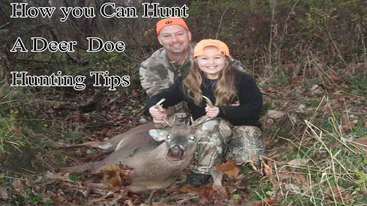 How you Can Hunt a Deer Doe Hunting Tips