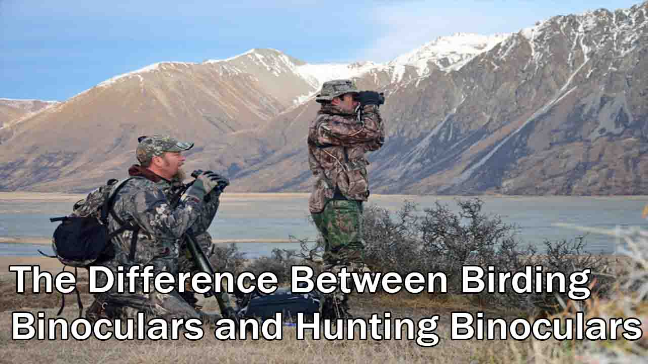 The Difference Between Birding Binoculars and Hunting Binoculars