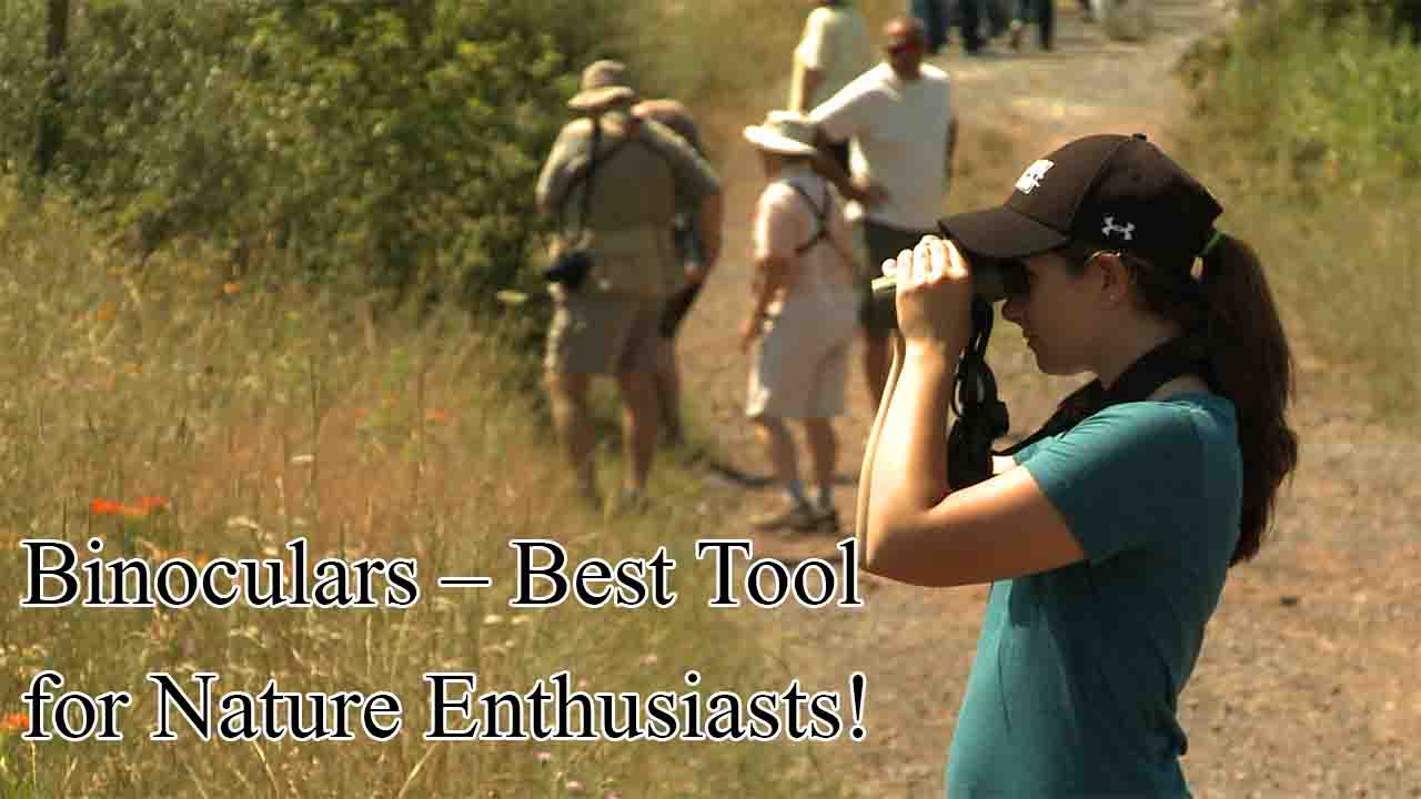 Binoculars – Best Tool for Nature Enthusiasts!