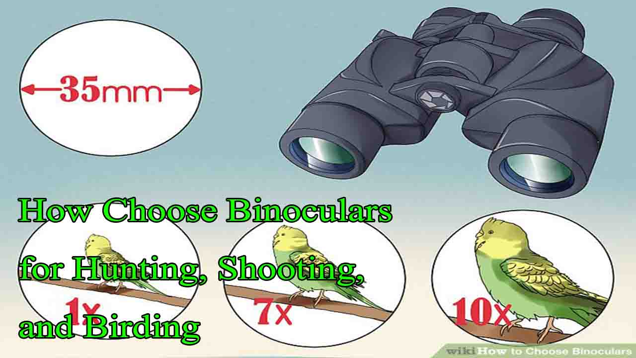 How Choose Binoculars for Hunting, Shooting, and Birding